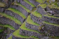 Inka, das Terrassen bei Machu Picchu bewirtschaftet Stockfotos