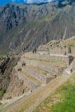 Inka ruiny Ollantaytambo fotografia royalty free