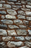 Inka-Spur Lizenzfreies Stockbild