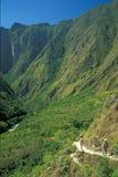 Inka-Spur stockfotografie