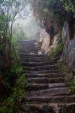 Inka Spur bei Machu Picchu lizenzfreie stockbilder