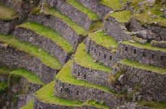 Inka-Terrassen Stockfoto
