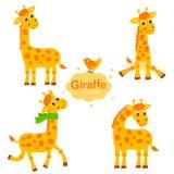 Inkasowa żyrafa W Różnych pozach śmieszny charakteru set ilustracji