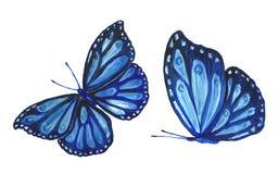 Inkasowa akwarela latający motyle Obraz Royalty Free
