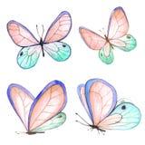 Inkasowa akwarela latający motyle Zdjęcia Stock