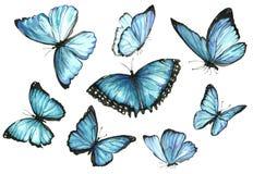 Inkasowa akwarela latający motyle Obraz Stock