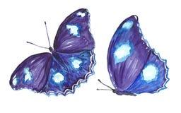 Inkasowa akwarela latający motyle Fotografia Royalty Free