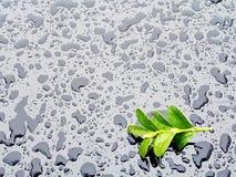inkasowa kropel tekstury woda Fotografia Stock