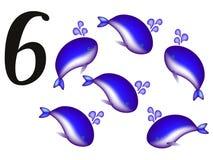 Inkasowa liczba dla dzieciaków zwierząt - numerowy sześć, wieloryby Fotografia Royalty Free