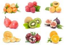 inkasowe świeże owoc zdjęcia royalty free