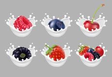 Inkasowe ikony owoc i jagody w dojnym pluśnięciu 3d wektoru set Obraz Stock