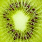 inkasowego karmowego kiwi makro- plasterek Zdjęcie Royalty Free