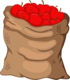 Inkasowy jabłko w worku Obrazy Stock