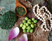Inkasowy lotosowy kwiat, ziarno, herbata, zdrowy jedzenie Obrazy Royalty Free