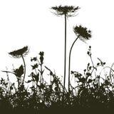 inkasowy projektantów rośliny wektor Fotografia Royalty Free