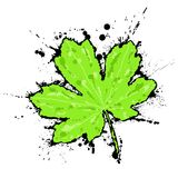 Inked leaf Stock Photo