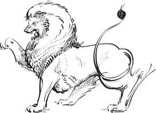 Inked Lion. A calligraphic stylized vector illustration of a majestic roaring lion.  In traditional heraldic vocabulary the charge and attitude are referred to Stock Photo