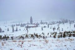 Inkomende sneeuwstorm royalty-vrije stock foto
