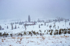 Inkommande snöstorm Royaltyfri Foto