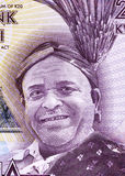 Inkosi Ya Makhosi M' Mbelwa II Royalty Free Stock Images