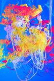 Colorful Composing of Swirling Inks Royalty Free Stock Images