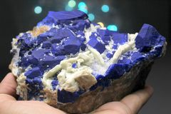Inkt Blauwe Lazurite met Wit Forsterite Specimen royalty-vrije stock foto