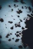 Inkt over een wit close-updocument dat wordt vervoerd Stock Foto's