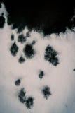 Inkt over een wit close-updocument dat wordt vervoerd Stock Afbeelding