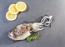 Inktvissen op een lei worden voorgesteld die stock fotografie