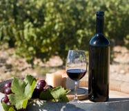 Inländischer Wein Stockfotografie