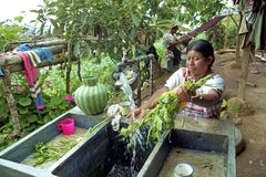 Inländisches Leben der guatemaltekischen indischen Familie Lizenzfreies Stockfoto