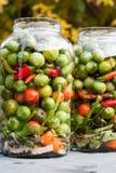 Inlagd grönsak Fotografering för Bildbyråer