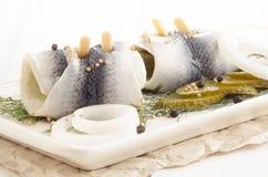Inlagd sill med ättiksgurkan och löken Arkivbilder