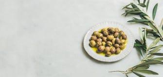 Inlagda gröna medelhavs- oliv och olivträdfilial, brett format fotografering för bildbyråer