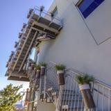 Inlagda växter som fodrar trappan av en byggnad royaltyfria bilder