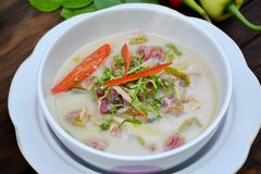 Inlagt griskött för curry, thailändsk mat Arkivbild