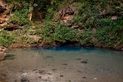 The inland Blue Hole of Belize royalty free stock images