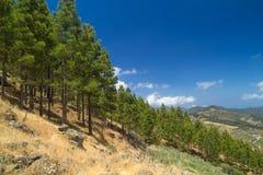 Inland Central Gran Canaria, Artenara area Royalty Free Stock Image