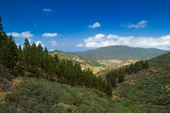 Inland Central Gran Canaria Royalty Free Stock Image