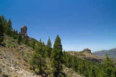 Inland Central Gran Canaria,  Roque Nublo and Canary Islands pin Stock Photography