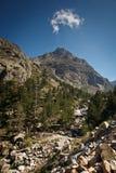 Inland Corsica, splendid Restonica Valley Royalty Free Stock Photo