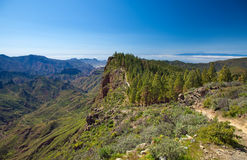 Inland Gran Canaria Royalty Free Stock Photos
