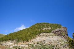 Inland Gran Canaria, Montana de Artenara Stock Image