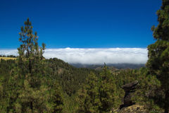 Inland Gran Canaria, Panza de Burro cloud cover Royalty Free Stock Photography