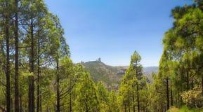 Inland Gran Canaria Royalty Free Stock Photo