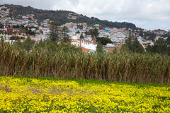 Inland Gran Canaria, view towards Historical town Teror Stock Photos