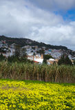 Inland Gran Canaria, view towards Historical town Teror Royalty Free Stock Photo