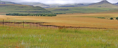 Inland landscape Stock Photos