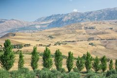 Inland  landscape of Sicily in summer day, Sicily island Italy Stock Images