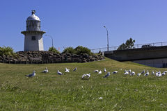 The Inland Lighthouse on the Wairoa River Stock Photos